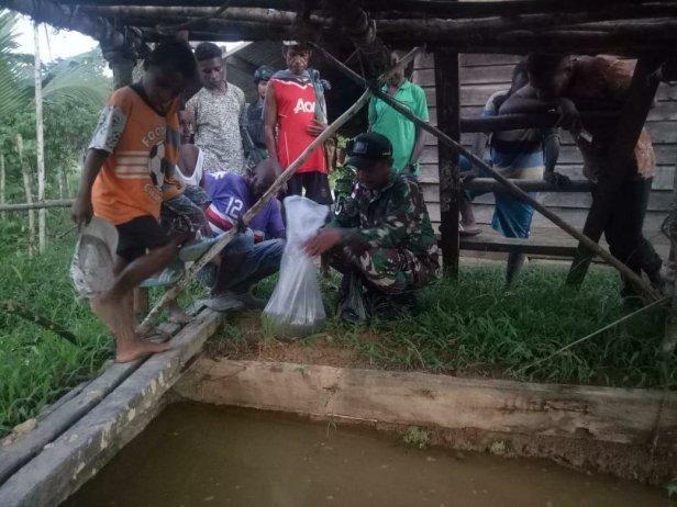 Wujudkan Ketahanan Pangan, Pos Ubrub Satgas Pamtas Yonif 509/Kostrad Ajar Warga Budidaya Ikan Lele